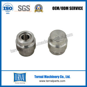 Precision Machining Screwed Nipple with Zinc Plating pictures & photos