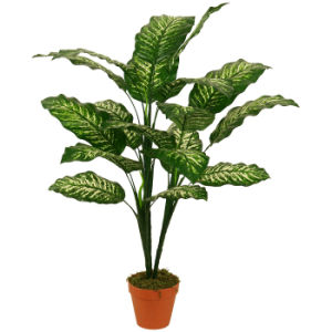 "Evergreen Artificial Plants of 95cm Dieffenbachia with 6""Plastic Pot, 20 Lvs pictures & photos"
