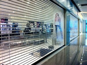 Retractable Security Grilles Roll Down Security Grilles (Hz-TD023) pictures & photos