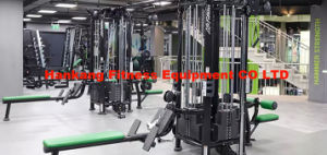 Signature Line, Protraining Equipment, Gym Machine-Olympic Bench Weight Storage (PT-947) pictures & photos