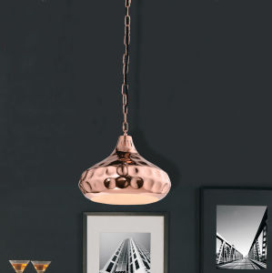 Simple Industrial Pendant Light with LED Bulb pictures & photos