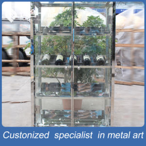 Customized Stainless Steel Wine Display Shelf for Restuarant/Home pictures & photos