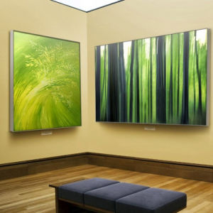Top Quality Aluminum Fabric Extrusion Picture Photo Frames pictures & photos
