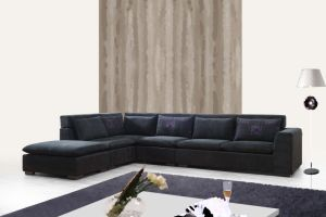 Elegant Combination of Chaise and Lounge Sofa with Cushion pictures & photos
