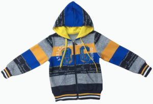 Men/ Boy Hoody Cardigan fashion Stripe pictures & photos