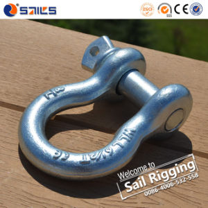 Us Type G209 Screw Pin Anchor Shackle pictures & photos