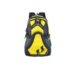 OEM Best Sale Cute Fashion Hiking Backpack pictures & photos