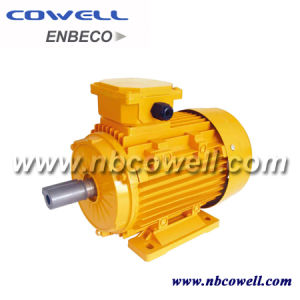 Single Phase and Three Phase Electric Motor pictures & photos