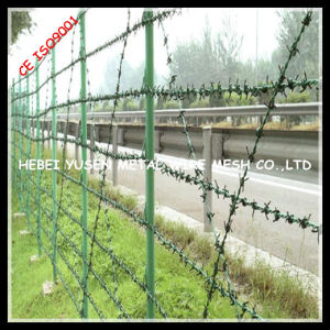 Anping Electro Galvanized Barbed Wire pictures & photos