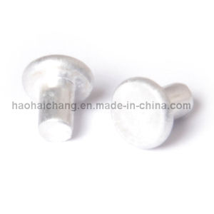 China Supplier Auto Industry Enclosed Type Solid Rivet