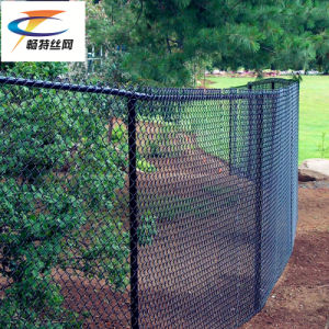Galvanized 5foot Used Chain Link Fencing (CT-53) pictures & photos