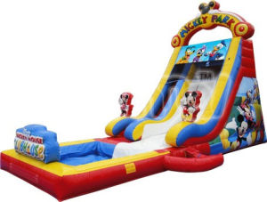 New Mickey Park Inflatable Water Slide with Pool CS102 pictures & photos