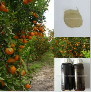 Plant Source Amino Acid 50% Free Amino Acid Low Price 100% Water Soluble pictures & photos