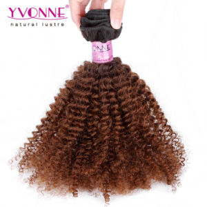 Two Tone Colors Ombre Brazilian Human Hair Weft pictures & photos