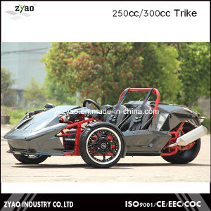 250cc Ztr Motorcycle Trike with EEC Approved pictures & photos