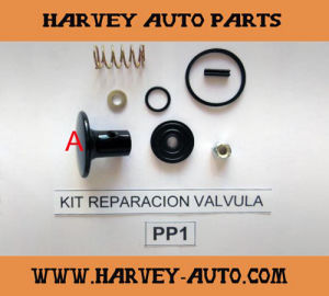 Hv-Rk06 Repair Kit for PP-1 Control Valve pictures & photos