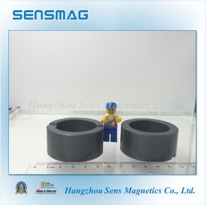 Powerful Custom Permanent Ferrite Ring Magnet C8 pictures & photos