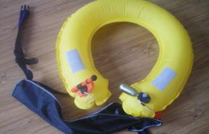 Fashionable Design Swimming Pool Inflatable Life Buoy pictures & photos