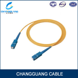 Low Insertion Loss Single/Multi Mode Rj 45 110 Patch Cord pictures & photos