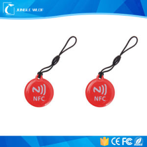 Wholesale NFC Topaz 512 RFID Key Fob Keychain pictures & photos