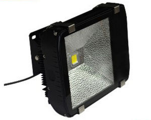 80W High Light Efficiency 120lm/W LED Inductrial Light pictures & photos