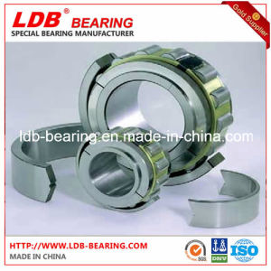Split Roller Bearing 03b100m (100*254*136) Replace Cooper pictures & photos