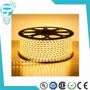 IP68 220V RGB LED Strip/220V LED Strip/LED Flexible Strip pictures & photos