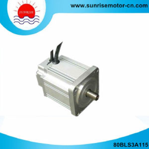 80mm 310V DC Servo Motor with Hight Voltage pictures & photos