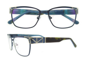 Latest Model Unsex Stainless Eyeglass Frame with Metal Ornament pictures & photos