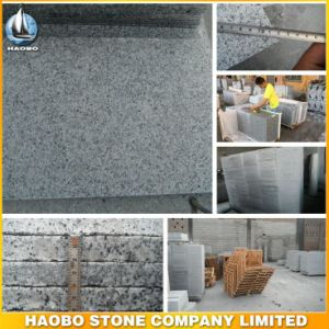 Cheap Grey Granite Tile for Flooring pictures & photos
