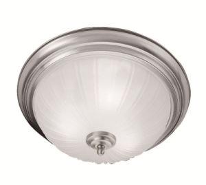 Moderm Simplism Style Ceiling Light (7111-91)