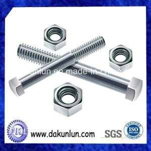 Customized Stainless Steel and Carbon Steel Studs with Nuts pictures & photos