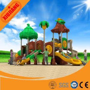 China Professional Manufacturer Outdoor Playground for Children pictures & photos