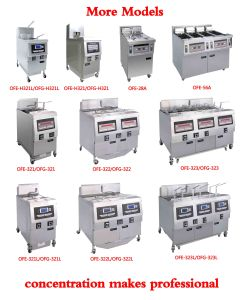 Ofg-H321 Used Deep Fryer (CE ISO) Chinese Manufacturer pictures & photos