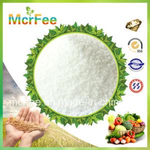 0-52-34 MKP Fertilizer Mono Potassium Phosphate, 99%Min Monopotassium Phosphate