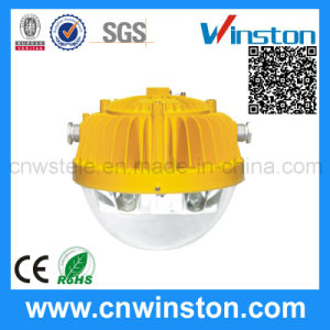 Outdoor Type LED Platform Explosion Proof Light with CE pictures & photos