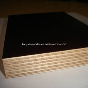 China 4X8 Feet Concrete Formwork Shuttering Playwood (QDGL150907) pictures & photos