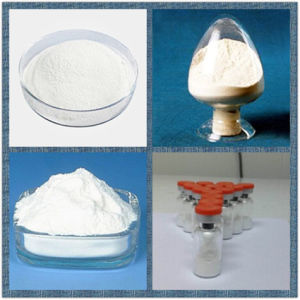 Sell Hot Steroid 99.5% Purity Ethynyl Estradiol (57-63-6) for Treating Female Hypogonadism pictures & photos