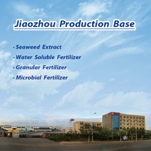 Water Soluble Seaweed Fertilizer pictures & photos