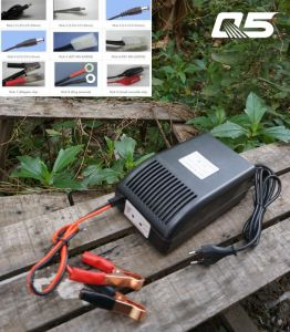 12V12A: 24V6A Auto-Converting System Trickle Lead acid battery Charger Storage Battery Charger pictures & photos