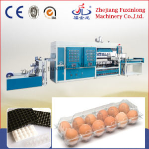 Automatic Plastic Egg Tray Making Machine pictures & photos