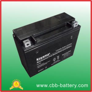 Made in China AGM Mf Motorcycle Battery Ytx24hl-BS, 12V 24ah pictures & photos