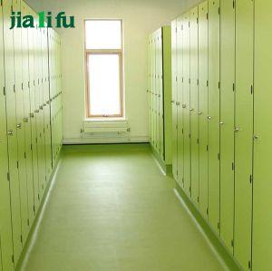 Jialifu Classic Simplicity HPL Board School Locker pictures & photos