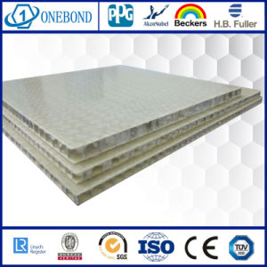 Rough Surface Fiberglass Honeycomb Panel for Decorative Wall pictures & photos