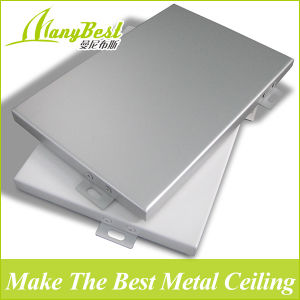 10 Years Experience Manufacturer for Aluminum Decorative Panel pictures & photos