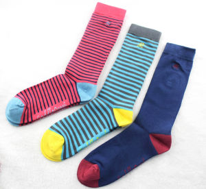 Striped Cotton Socks for Women and Men pictures & photos