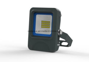 10W Outdoor Flood Light Epistar Newest with Ce RoHS Approved pictures & photos