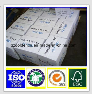 Copy Paper A4 80GSM, A4 Size Paper, A4 Paper Ream and Price pictures & photos