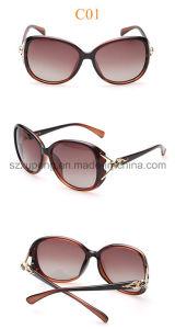 Fashionable Wholesale UV400 Acetate Sunglasses