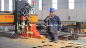 Gantry Type CNC Plasma & Flame Drilling & Cutting Machine pictures & photos